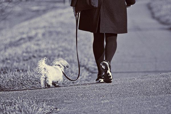 ходене и здраве